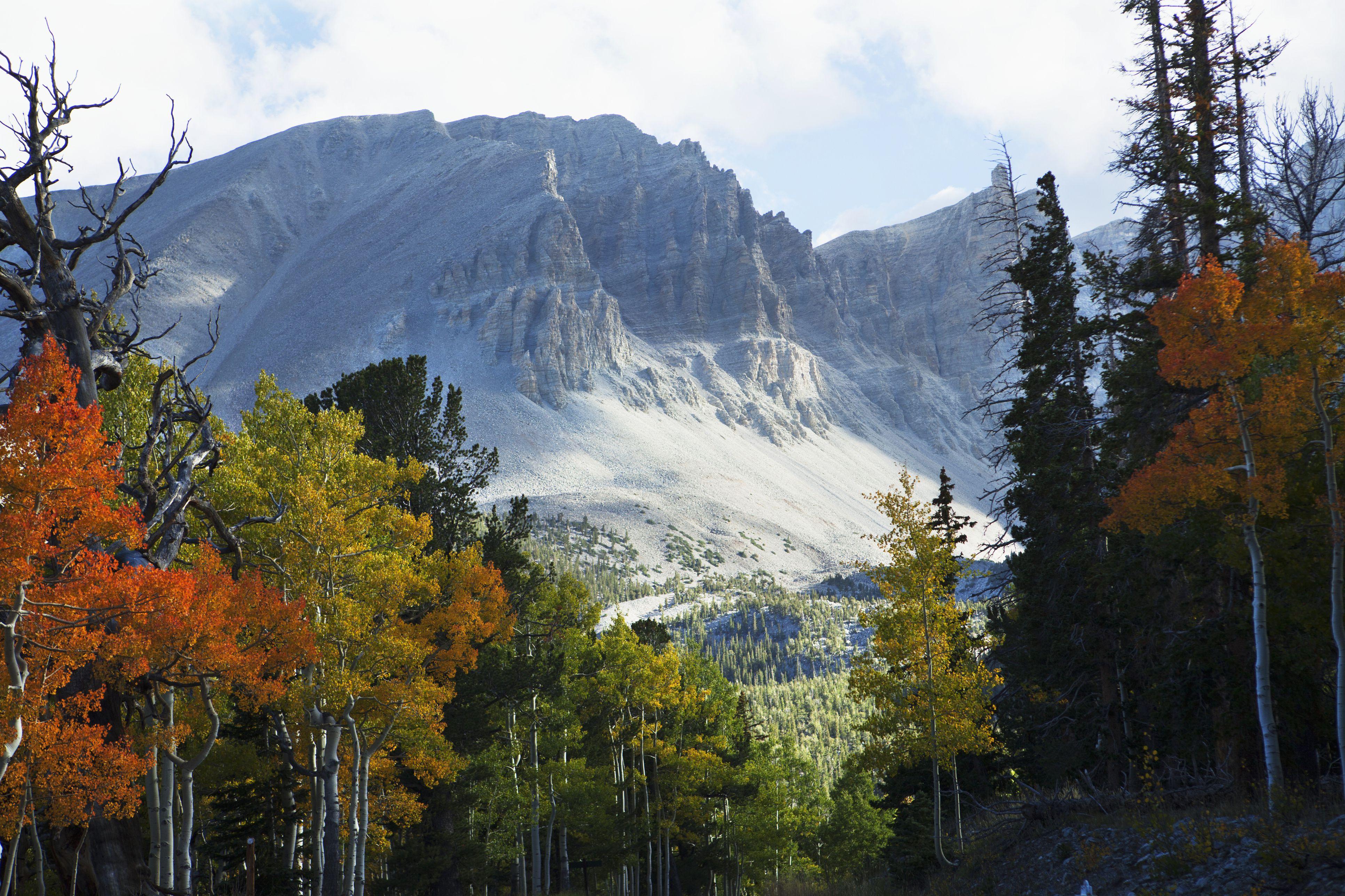 Wheeler Peak overlook from Wheeler Peak scenic drive, Great Basin National Park