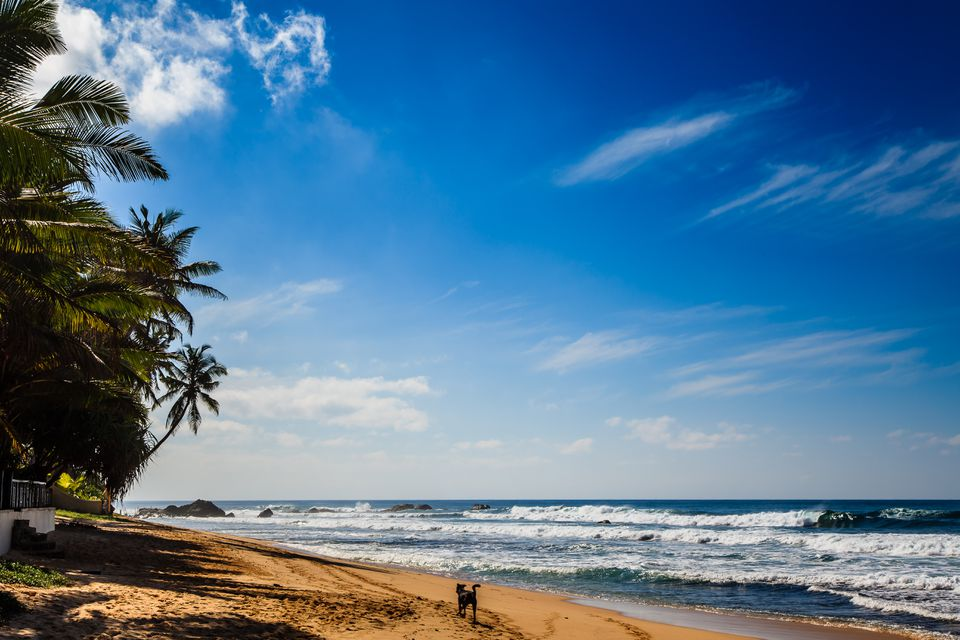 Blue sky and golden beach at Unawatuna, Sri Lanka