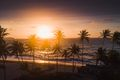 Aerial shot of sunrise over Caribbean shoreline, Barbados