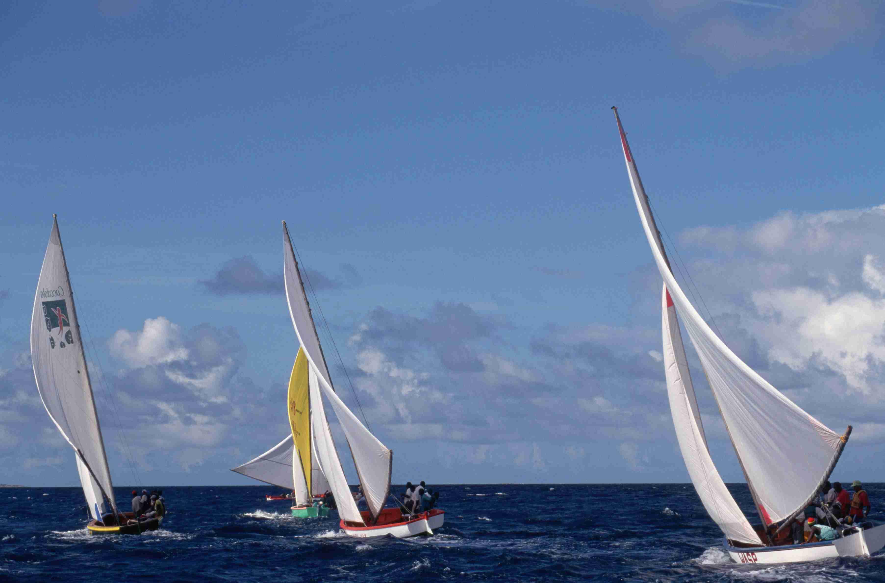 Racing Sailboats in Anguilla