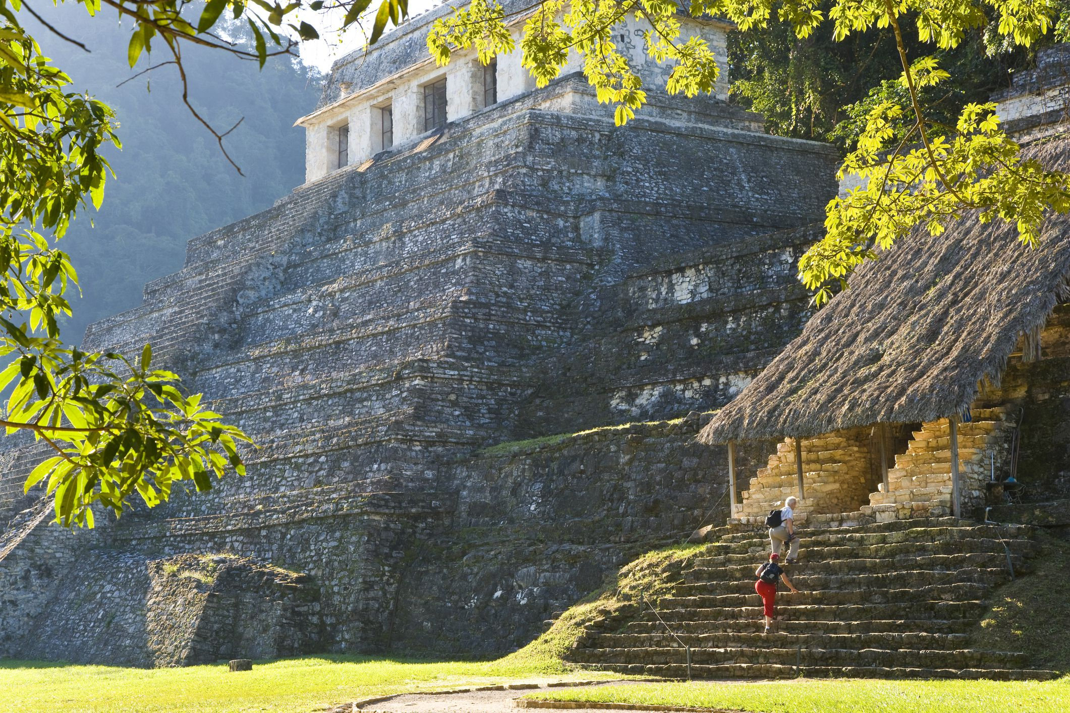 Nature and Ancient History Meet in the Mexican Town of Palenque