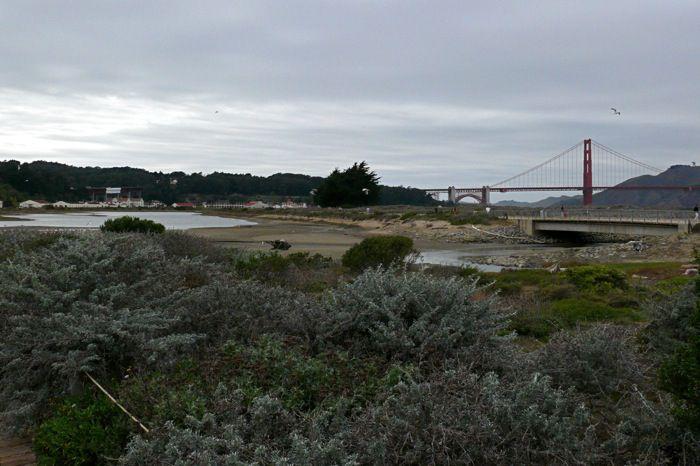 Crissy Field Marsh in the Presidio of San Francisco
