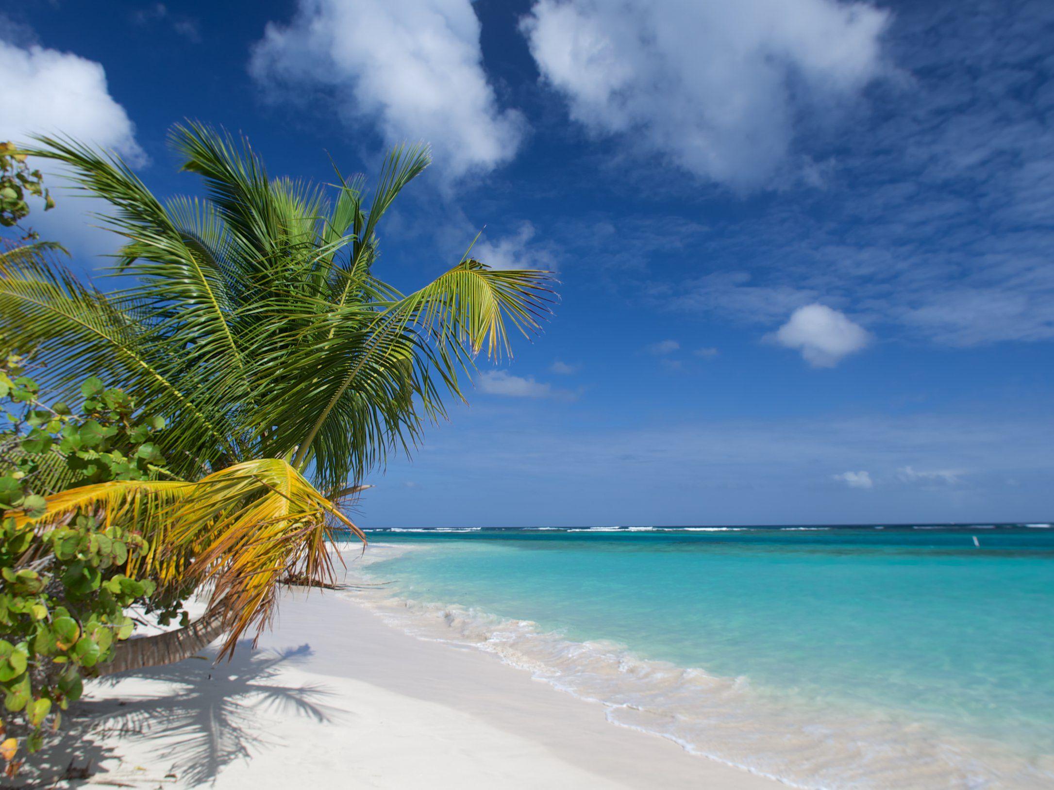 The Beaches Of Culebra Puerto Rico
