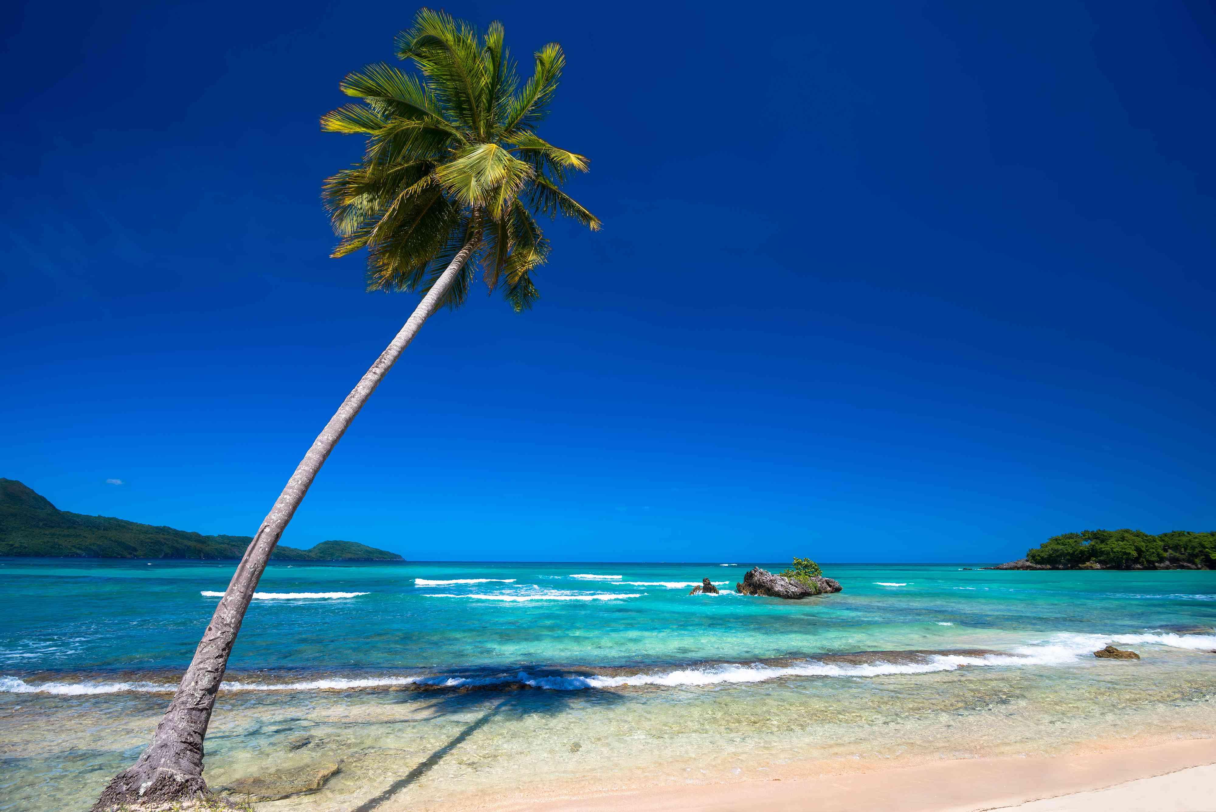Paradise beach Playa Rincon, Dominican Republic