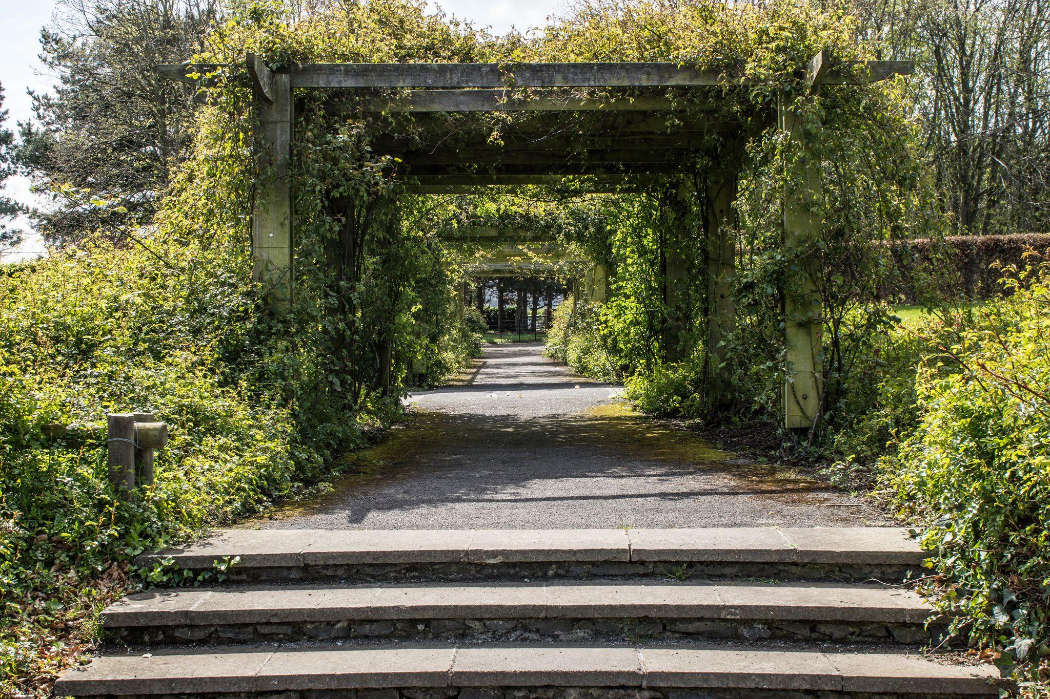 The Rose Garden In St. Anne's Park (Dublin)