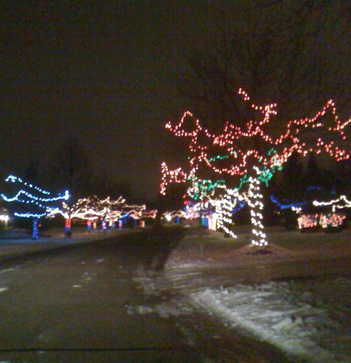 Christmas Lights shining for veterans in Detroit Suburb