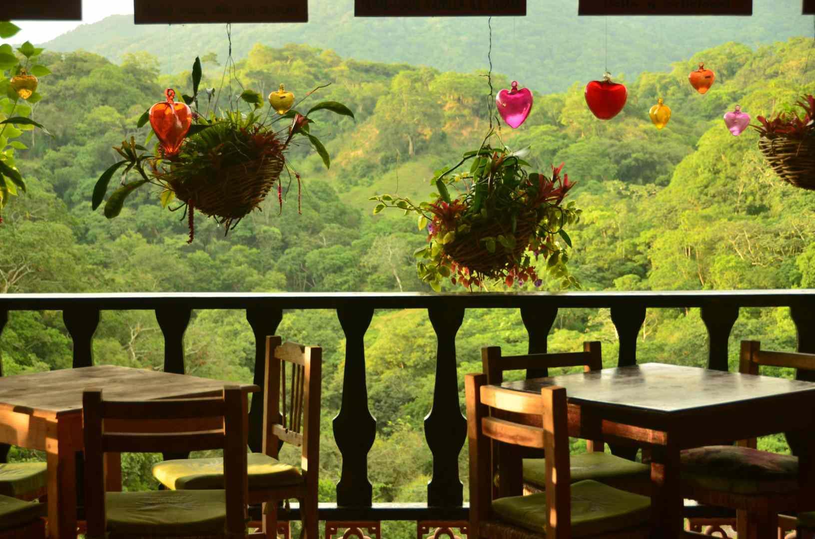 At the restaurant in the Vallarta Botanical Garden