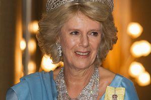 Camilla in diamonds