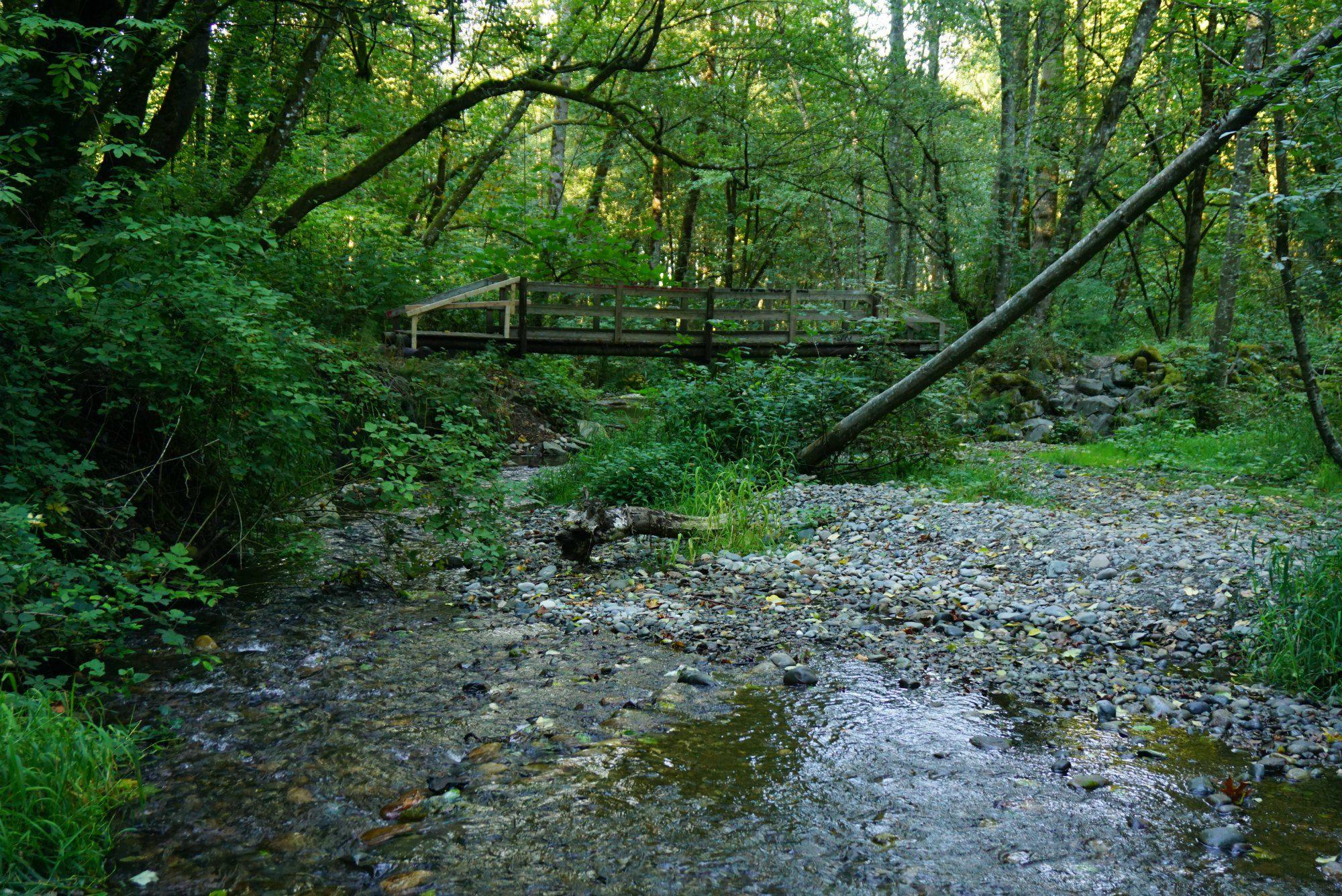 Swan Creek Park