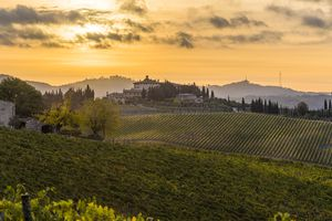 Farmhouse and its vineyards at sunrise. Gaiole in Chianti, Siena, Tuscany