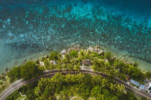 Aerial View of trees by sea in Moalboal, Philippines