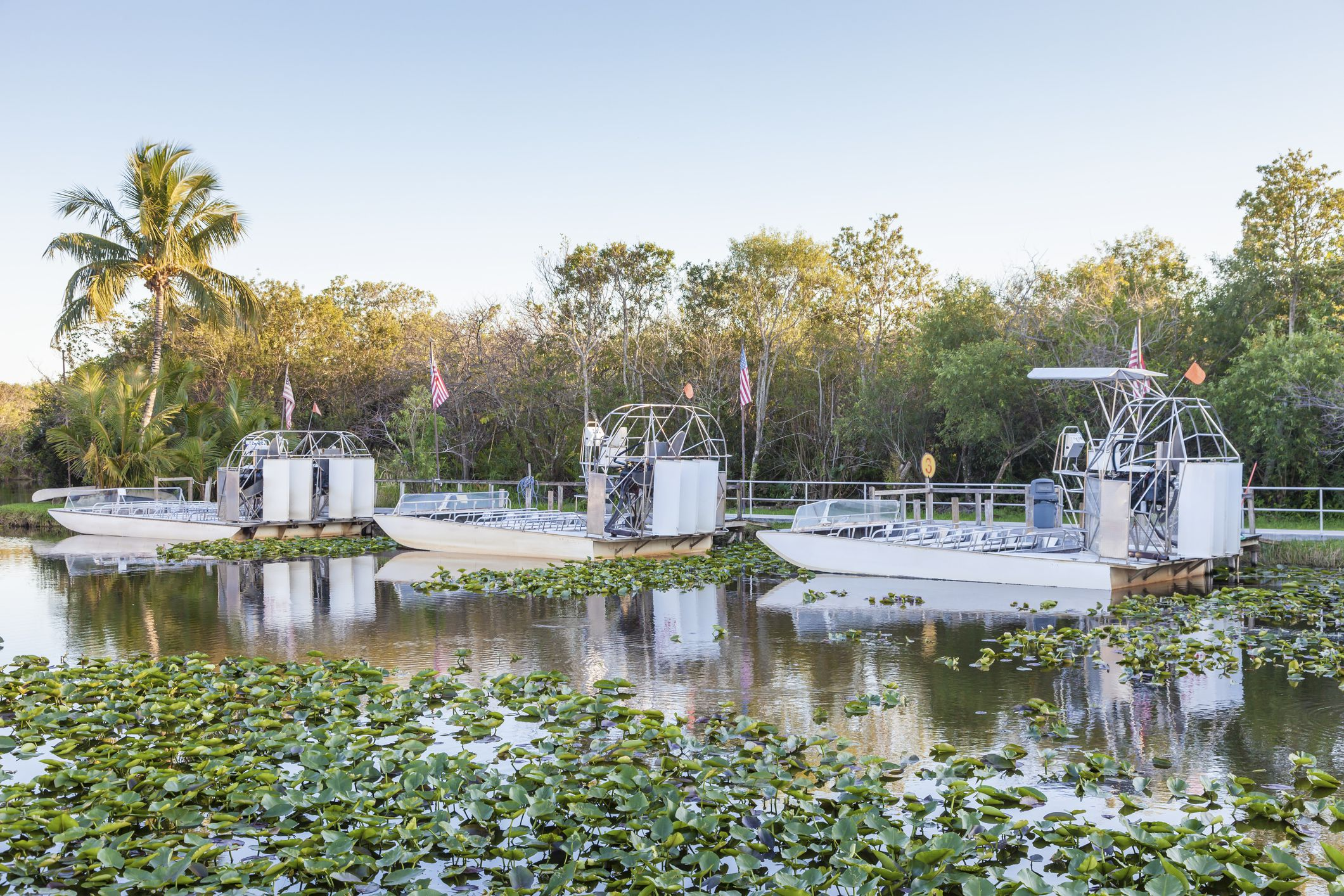Airboats docked in water