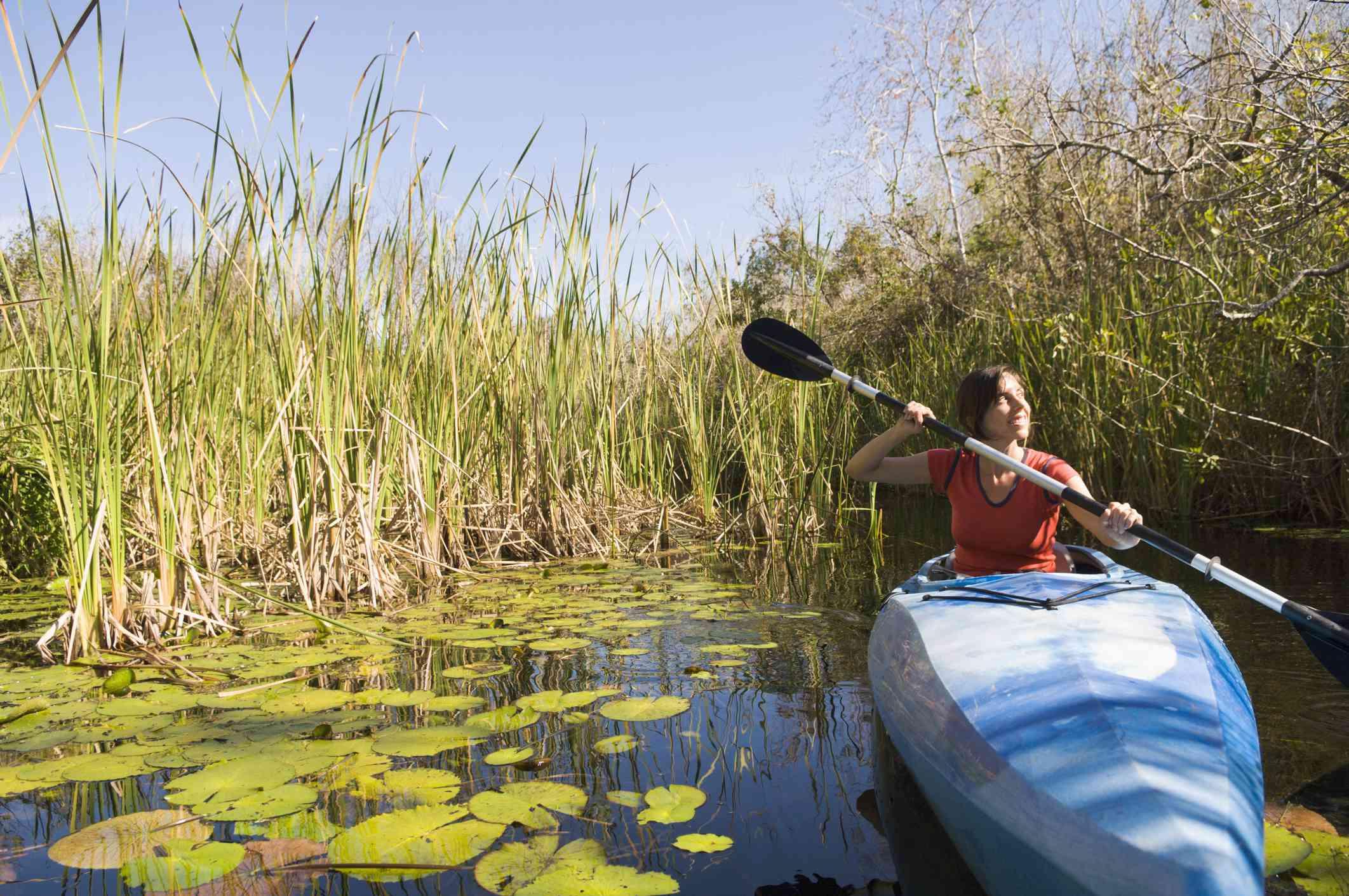Hispanic woman paddling kayak in everglades