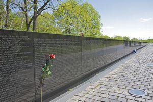 Single long-stemmed red rose left atop names inscribed in Vietnam Veteran's Memorial, Washington DC, USA