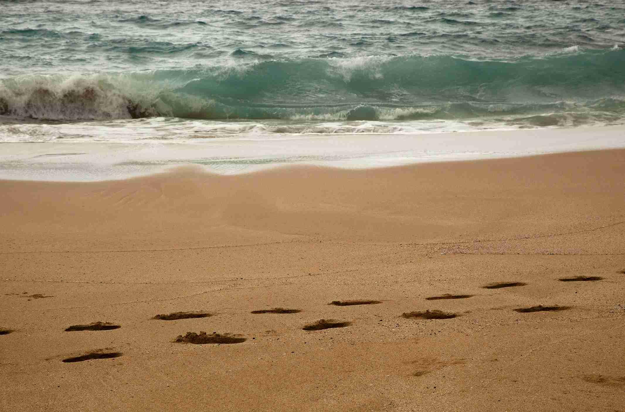 Footprints on Molokai Beach.
