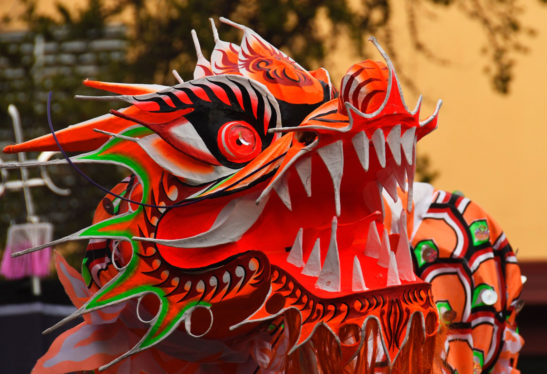 Things to Do for Lunar New Year in Seattle