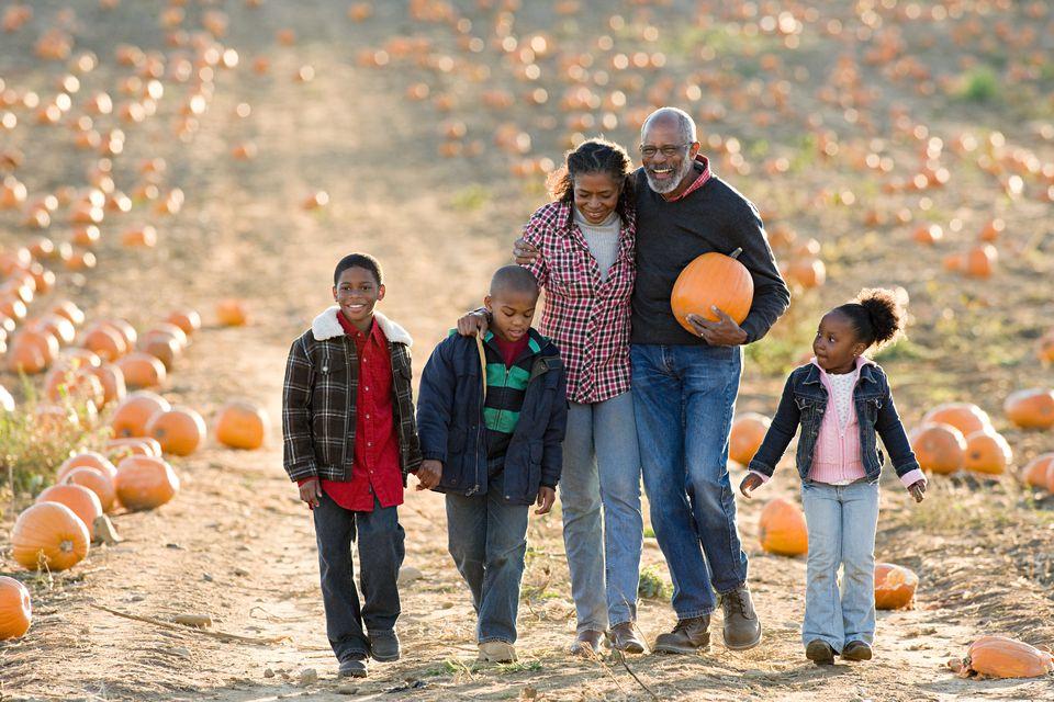 Una familia caminando por un campo de calabazas