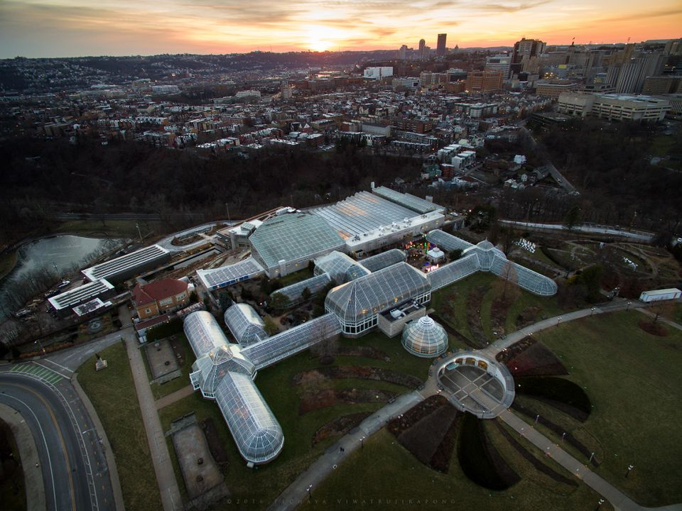 Aerial View of Phipps Conservatory and Botanical Gardens