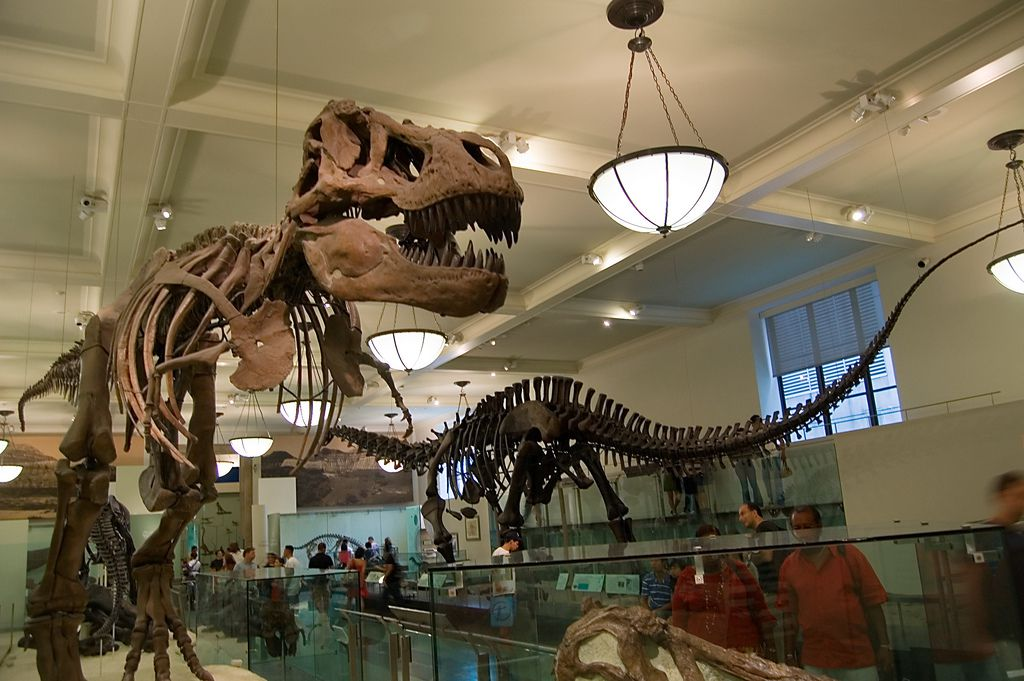 american history museum - 1024×681