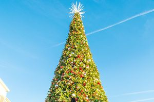Village at Leesburg Christmas tree, cropped
