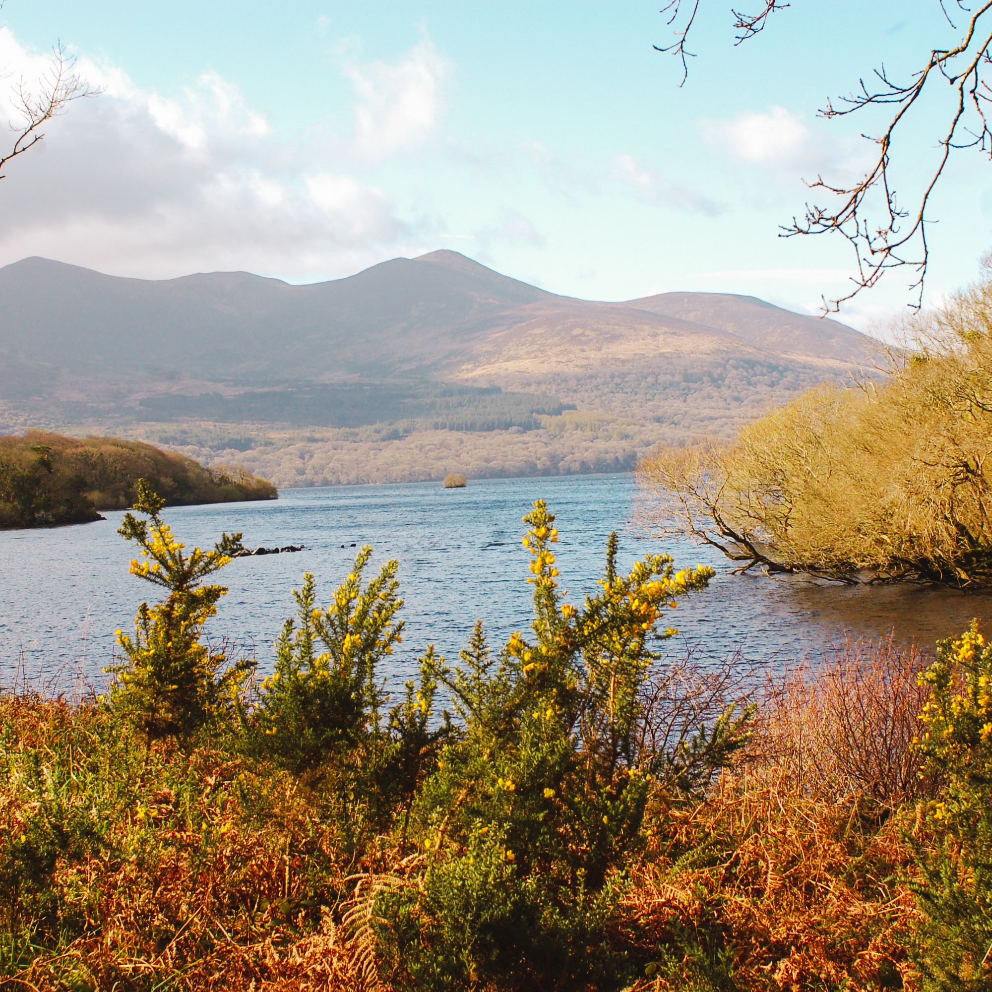 The Top 20 Places to See in Ireland