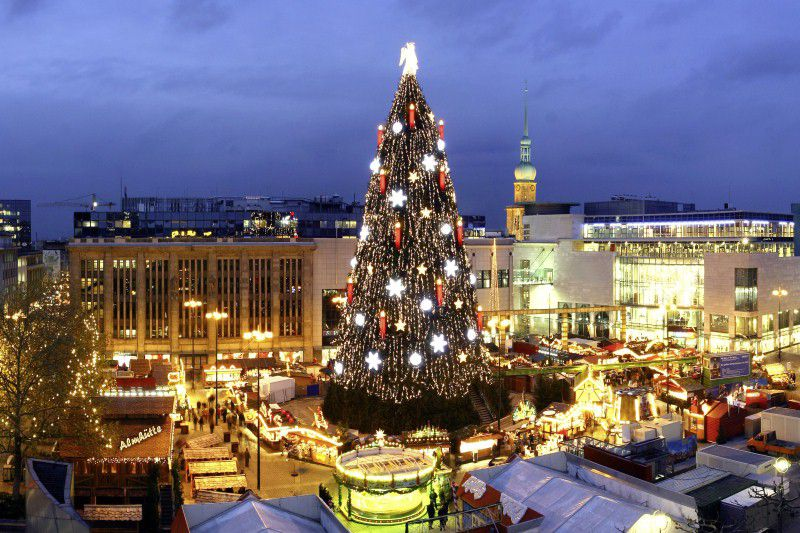 low priced 64378 f5d19 The Biggest Christmas Trees on Earth