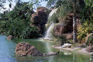 Bird lagoon at Zoo Miami