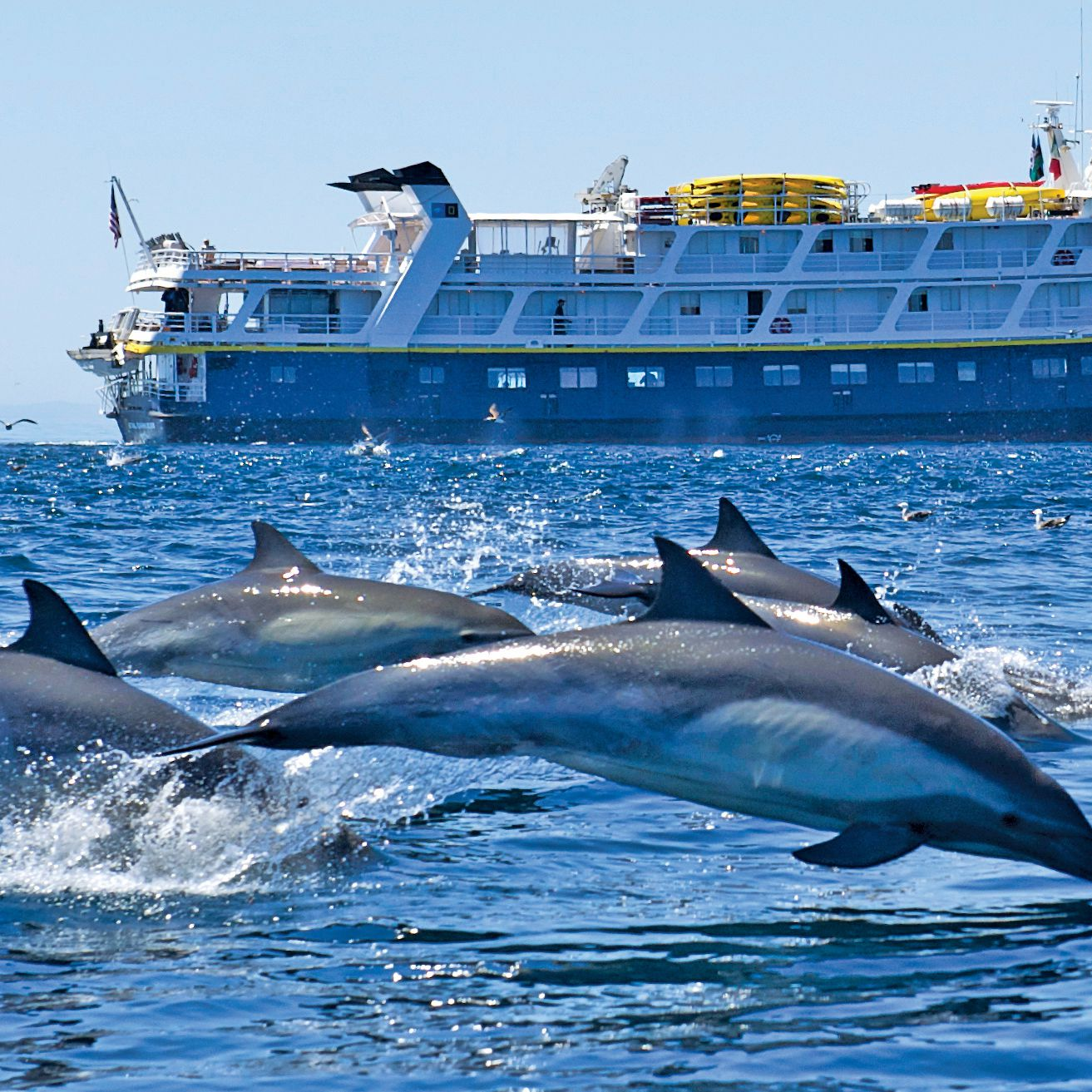 The Best Small Cruises in the USA