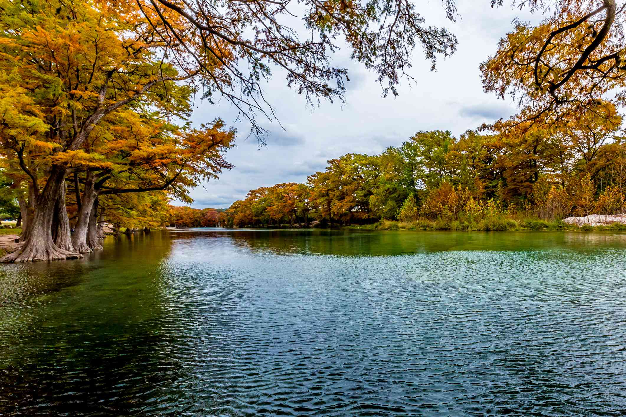 Fall foliage surrounding the Frio River in Texas