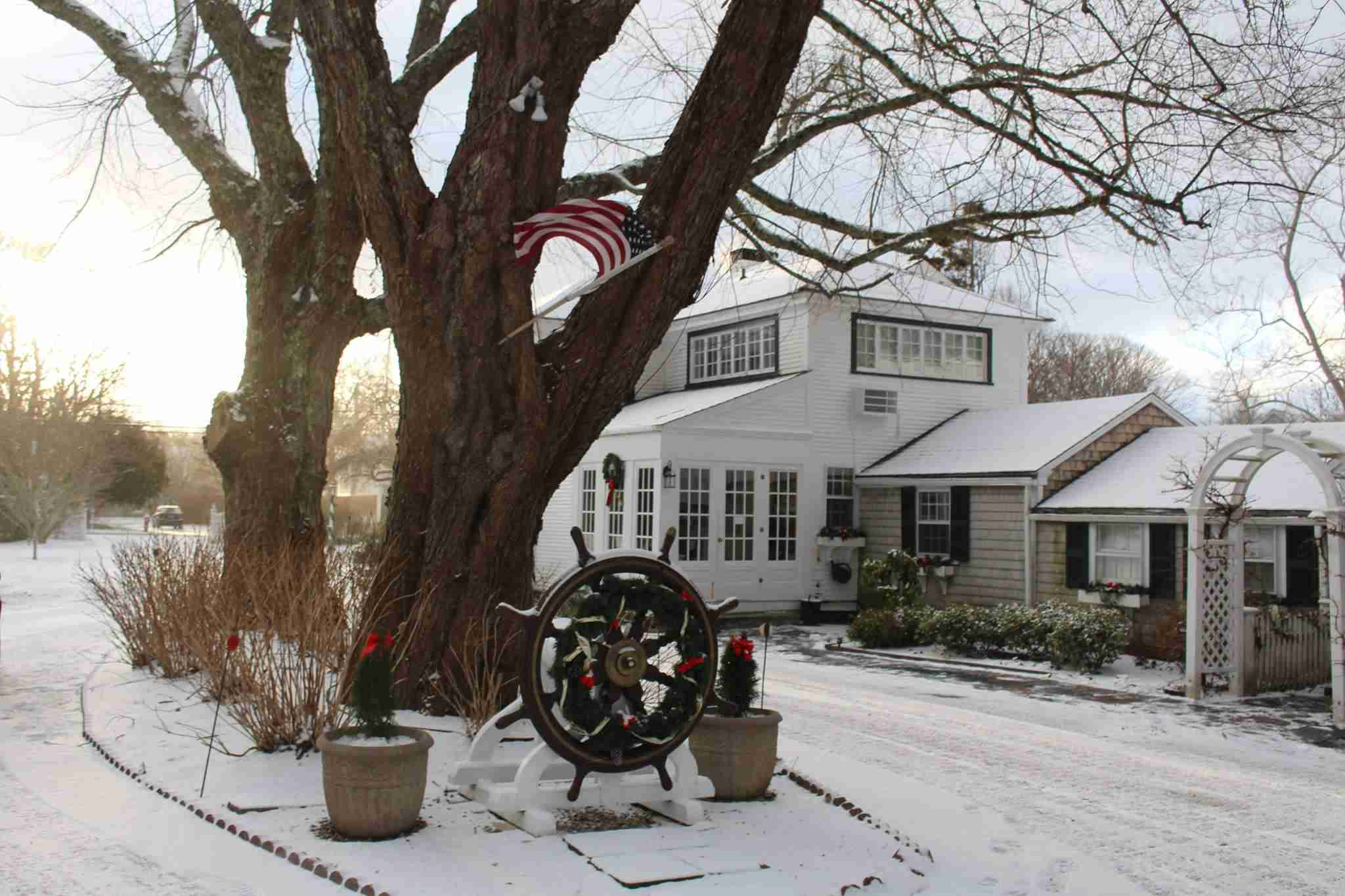 A snowy day with cottage in background