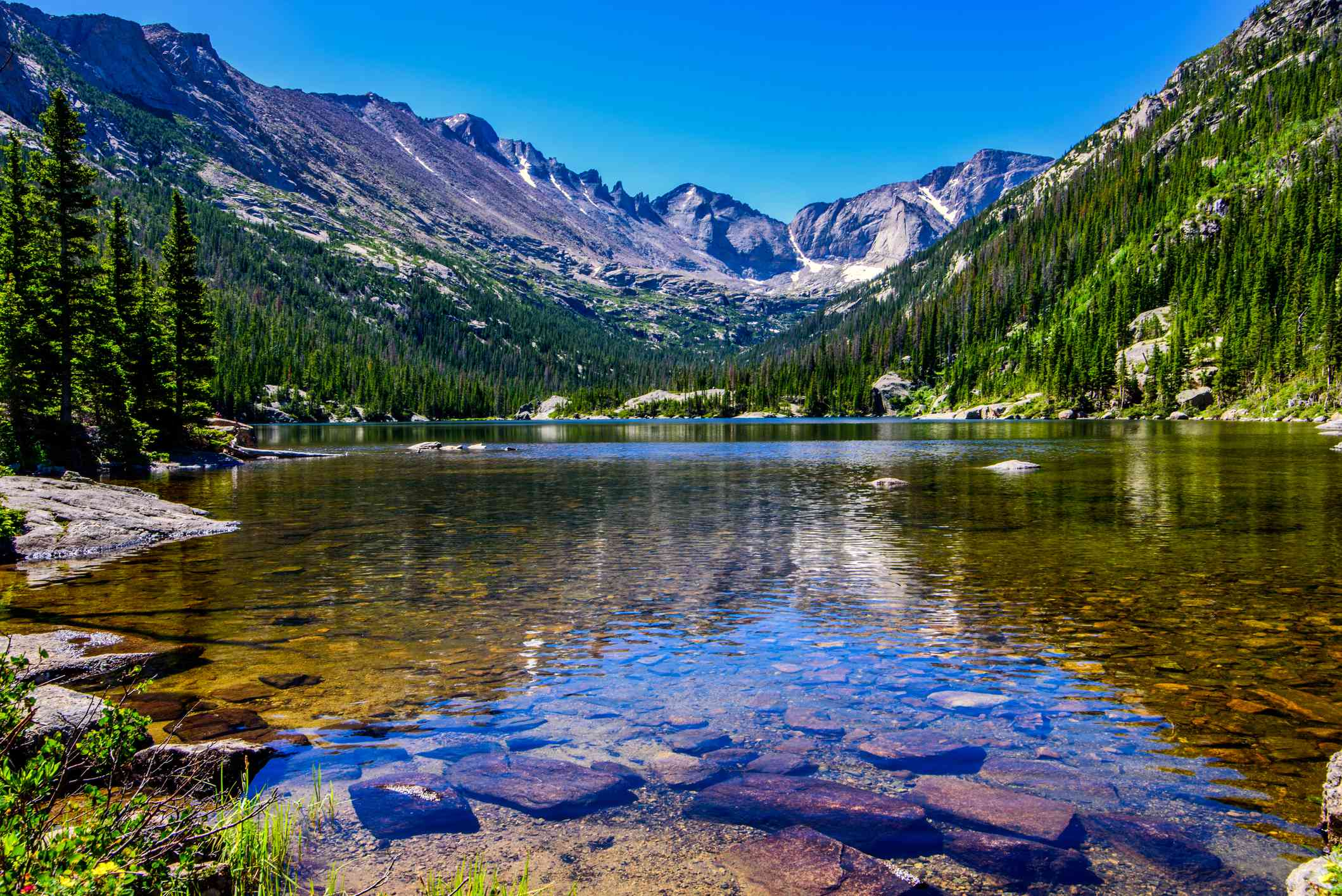 clear alpine lake surrounded by evergreen trees