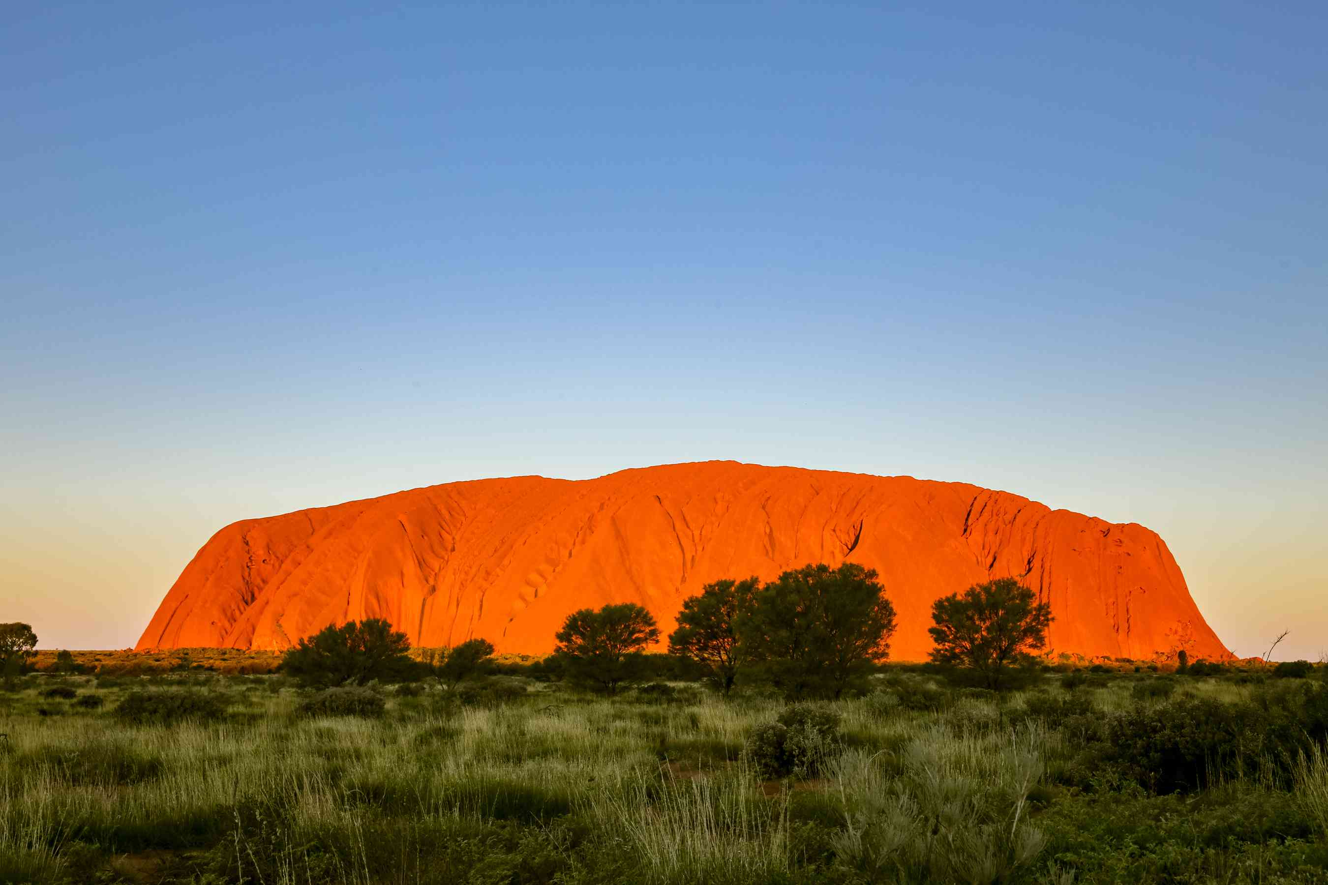 Uluru golden at dusk