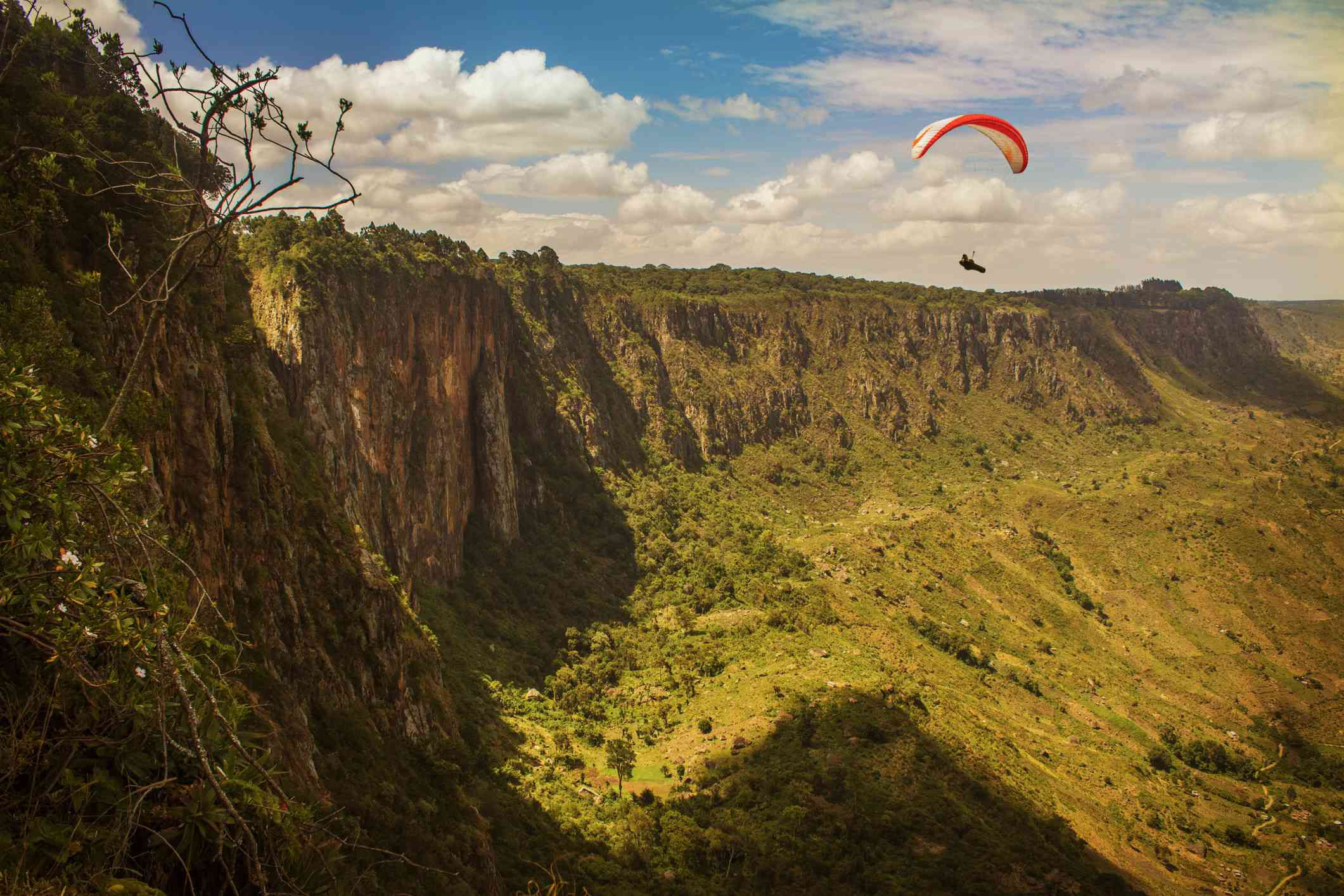 forested cliffs with paraglider in the sky