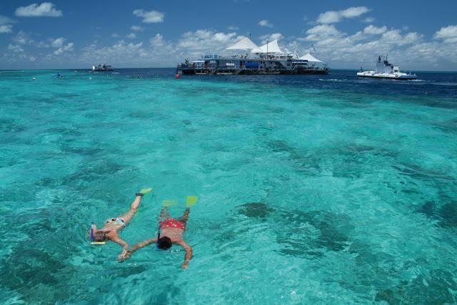 Snorkeling off Catseye Beach on Hamilton Island, Great Barrier Reef, Australia