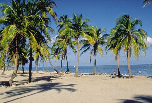 Cálido y húmedo en Miami