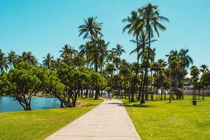 Couple walking through Ala Moana Beach Park