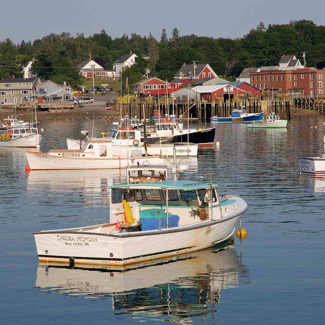 Bass Harbor Maine Photo from Thurston's Lobster