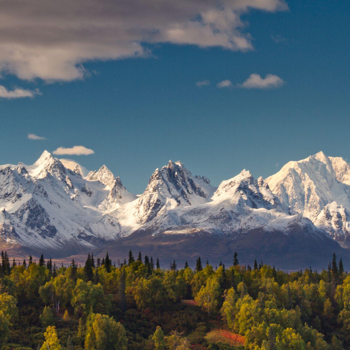 National Parks & Public Lands Legacy - cover