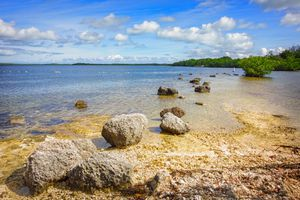 John Pennekamp Coral Reef State Park, Key Largo Florida Keys