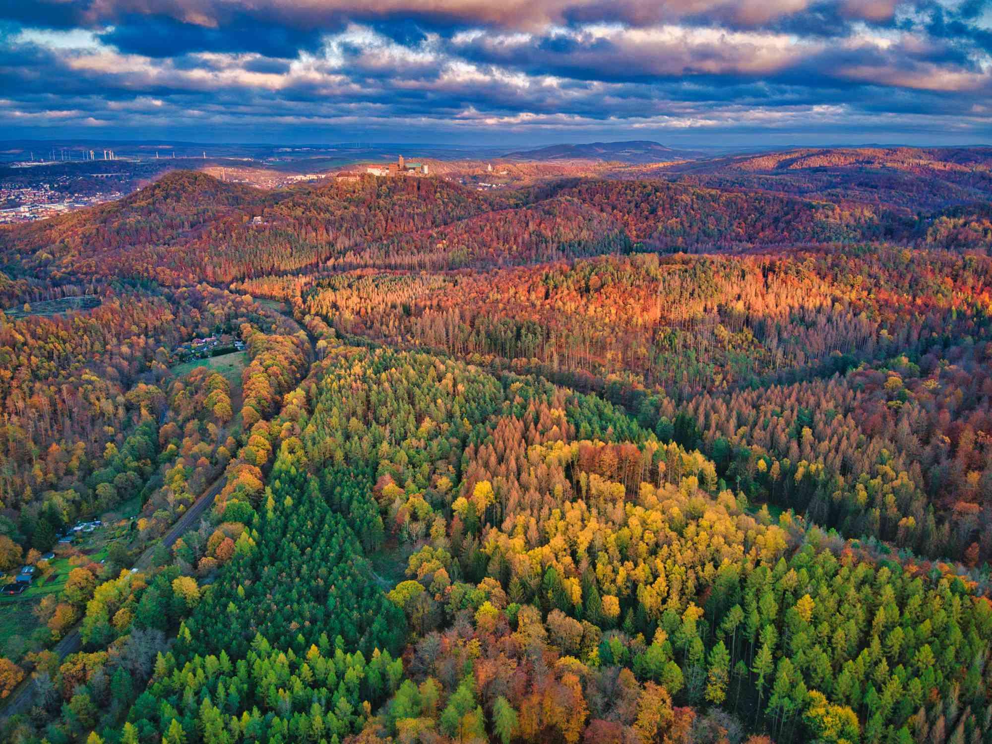 Aerial view above autumn forest in Wartburg