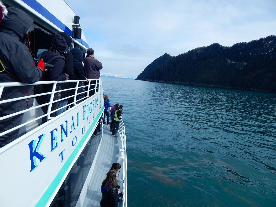 Day cruising Alaska
