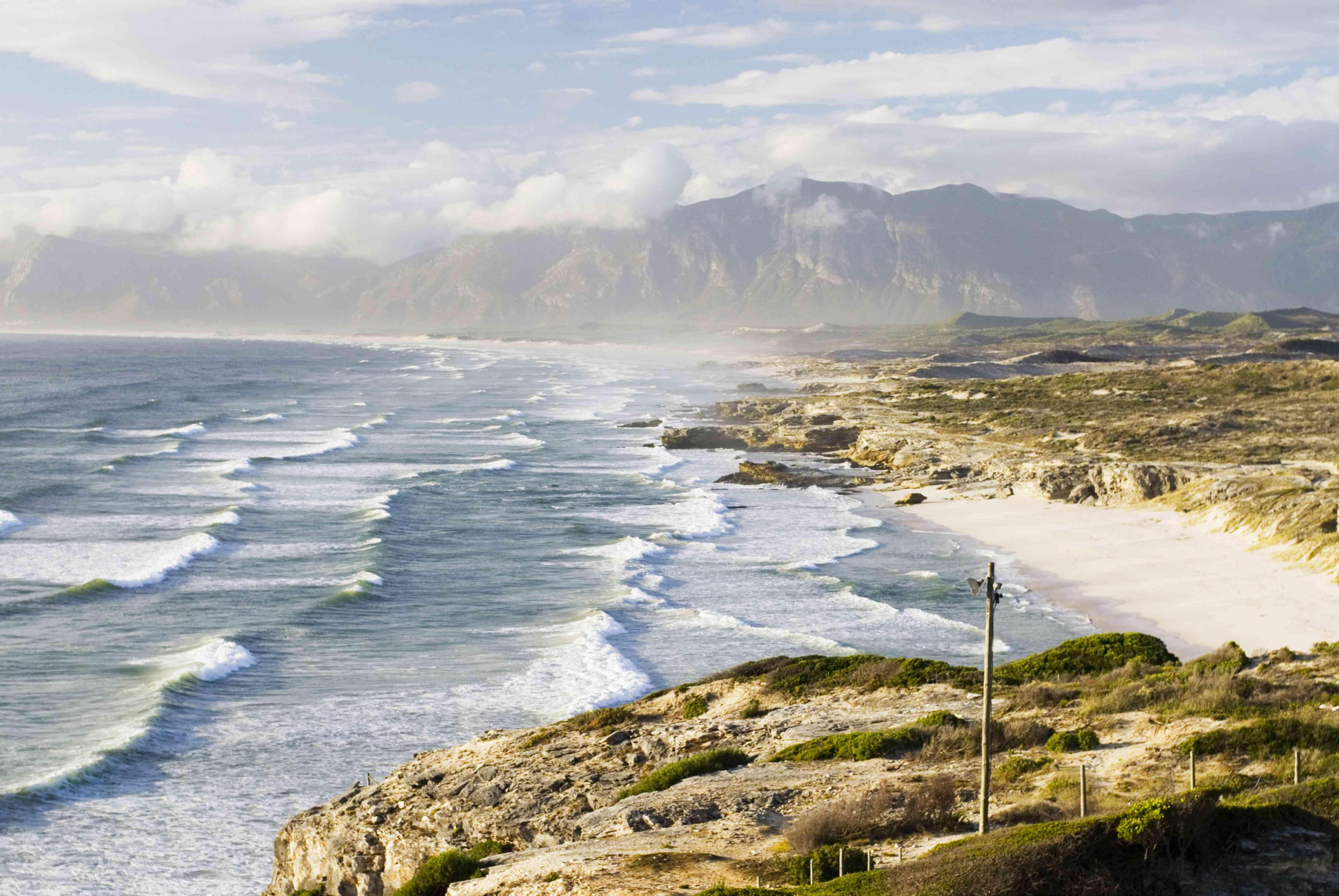 South Africa, Gansbaai, Walker Bay Nature 'Reserve