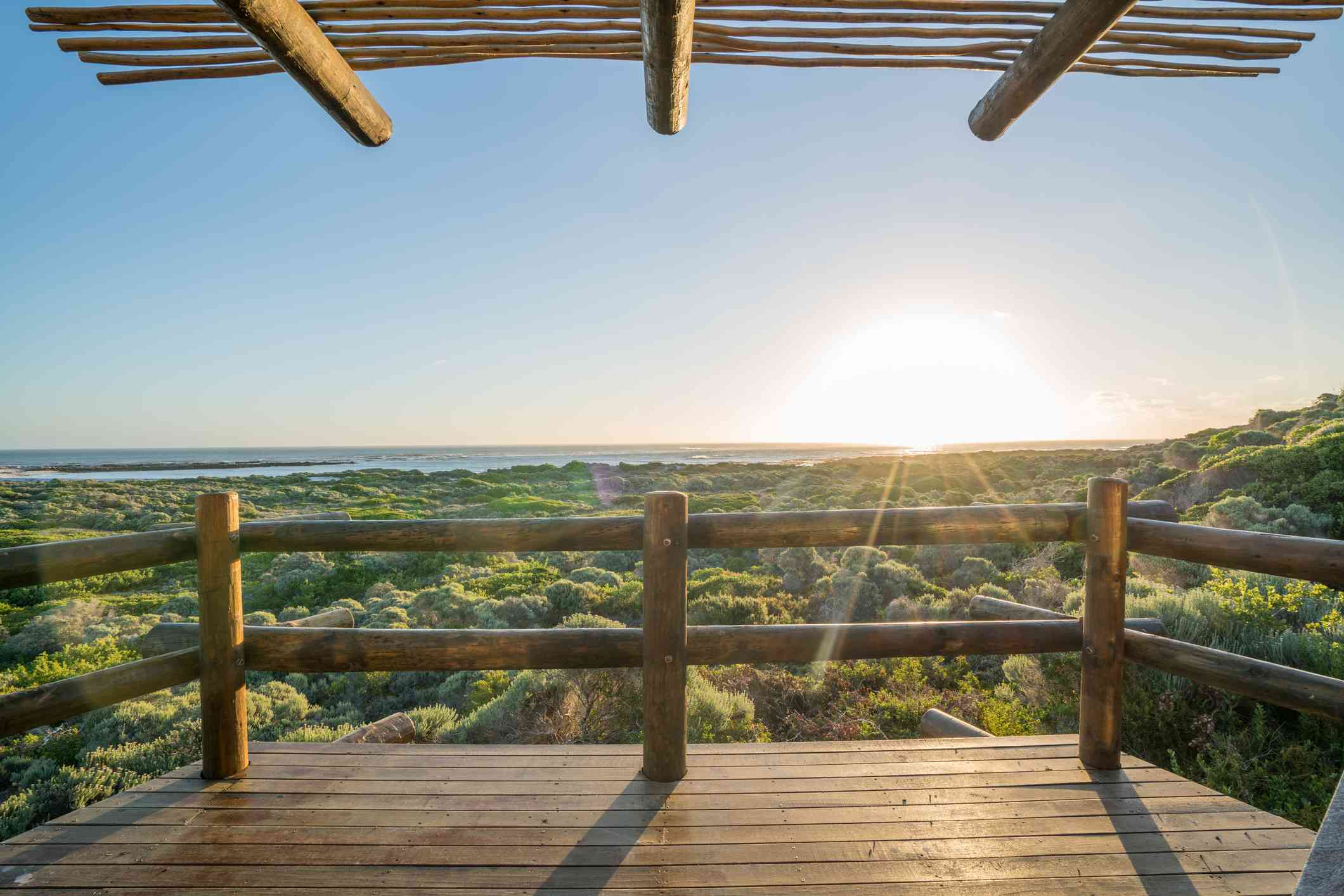 Wooden terrace overlooking low bush at sunrise