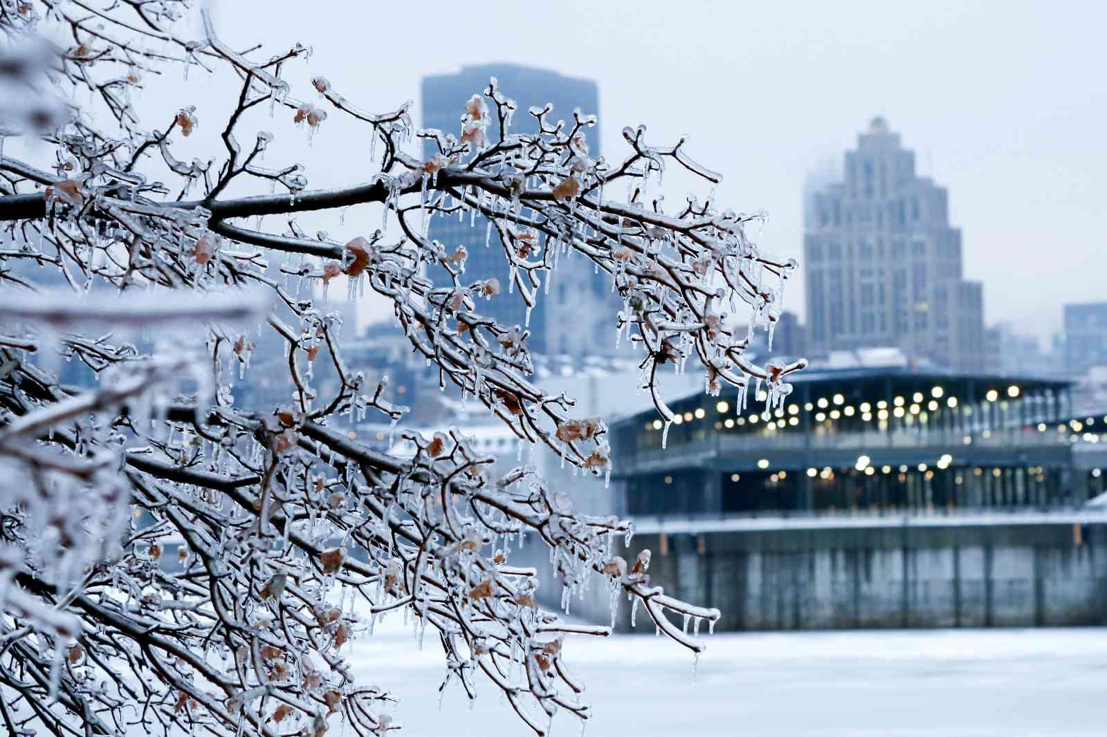 Eventos, festivales, conciertos y museos de Montreal en enero de 2018: una lista con las mejores selecciones del mes