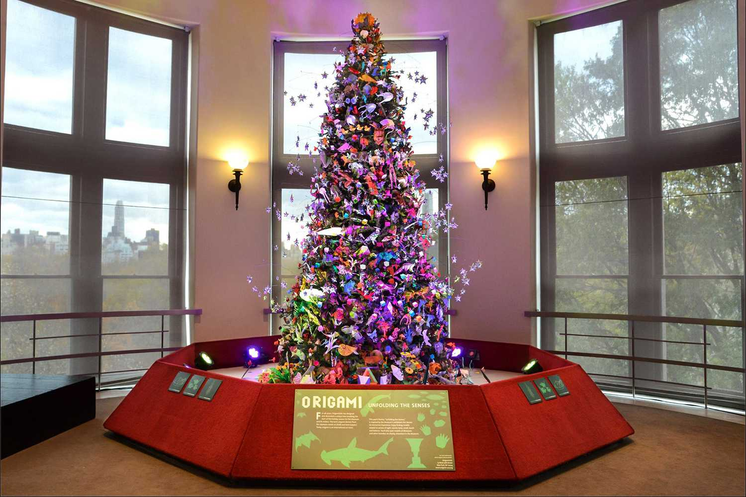 Best Christmas Trees.Best Christmas Trees To See In Nyc