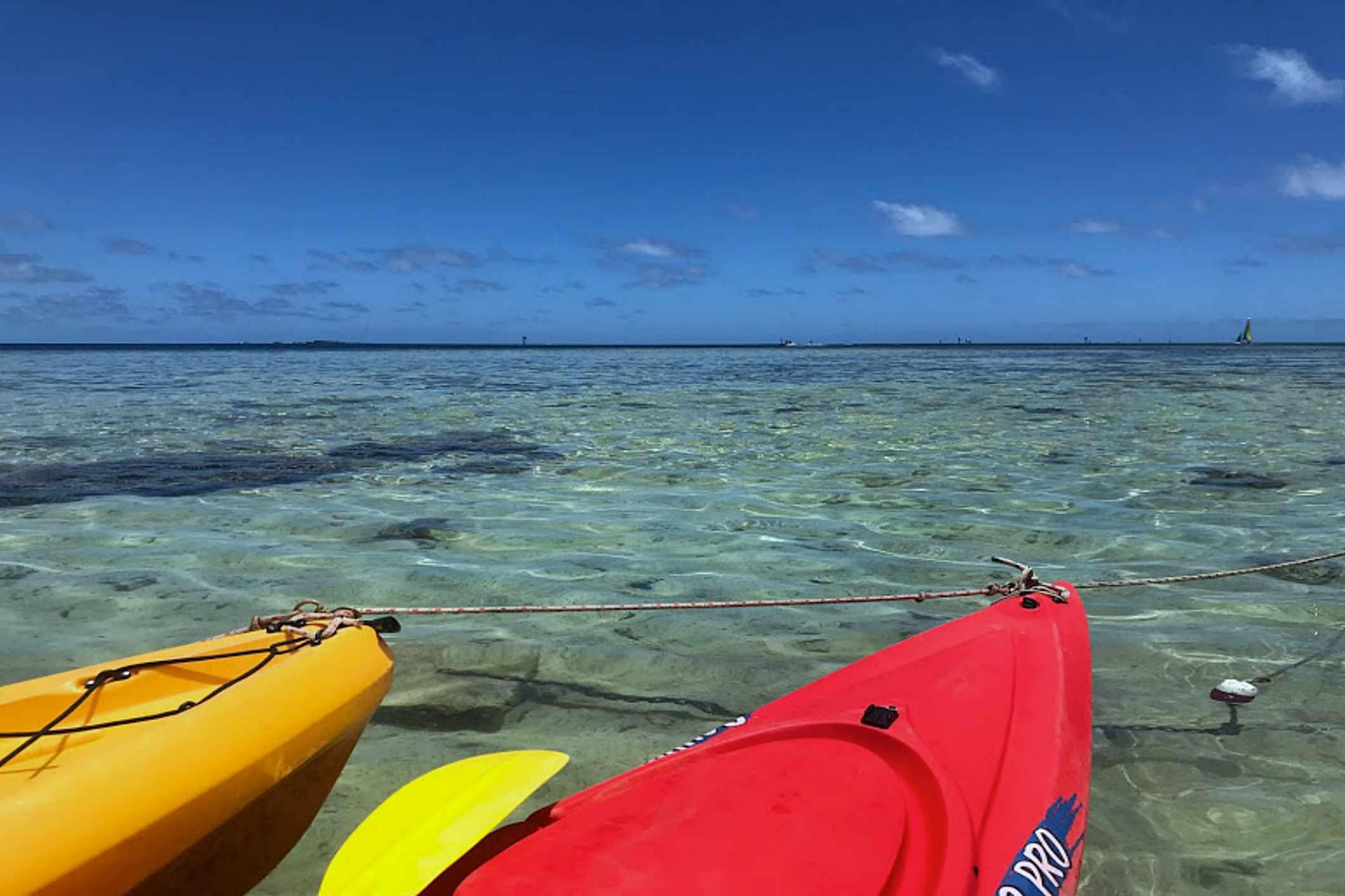 Kayaking in Kahaluu, Oahu