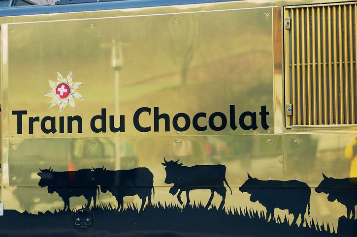 Cows on a golden train car of the Train du Chocolat