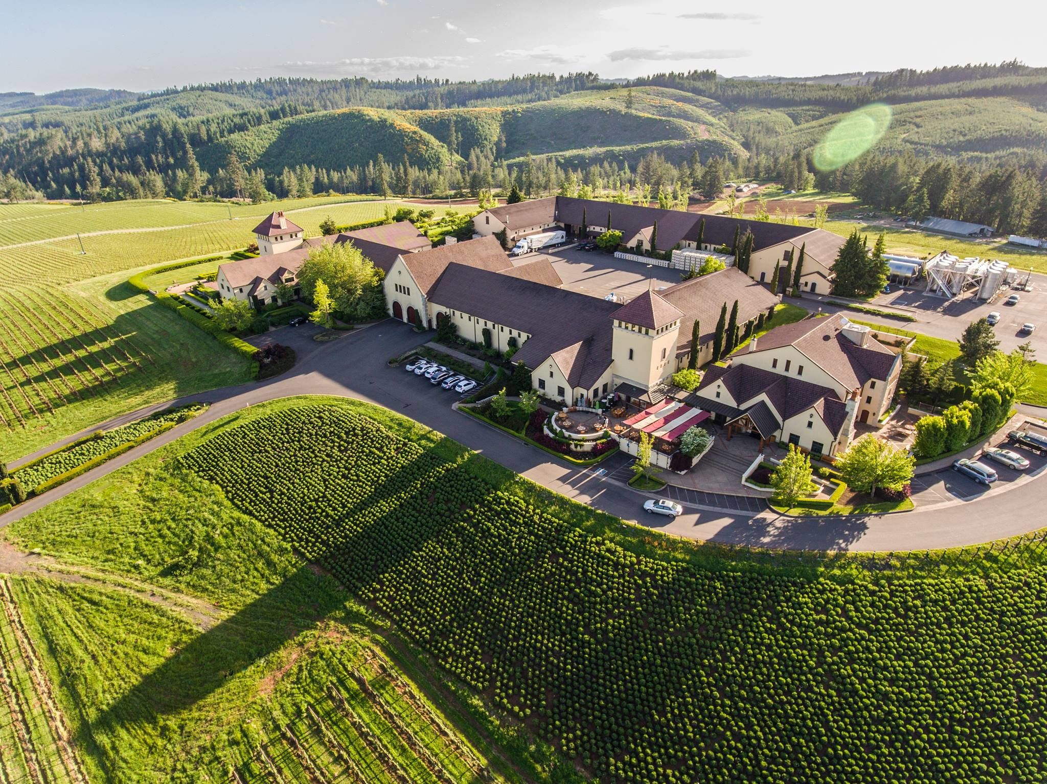 King Estate Winery Overhead View