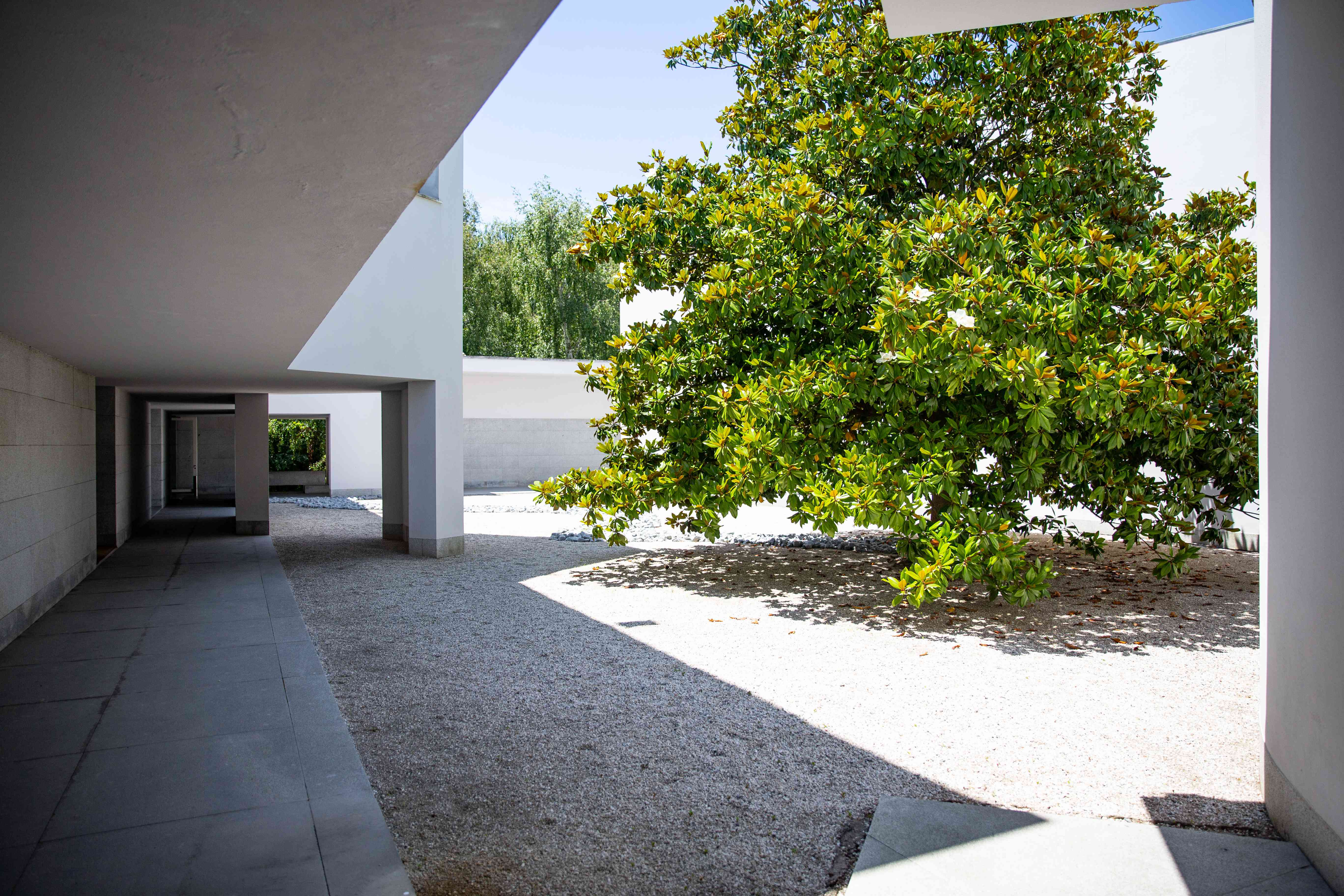 The building of Serralves Modern Art Museum