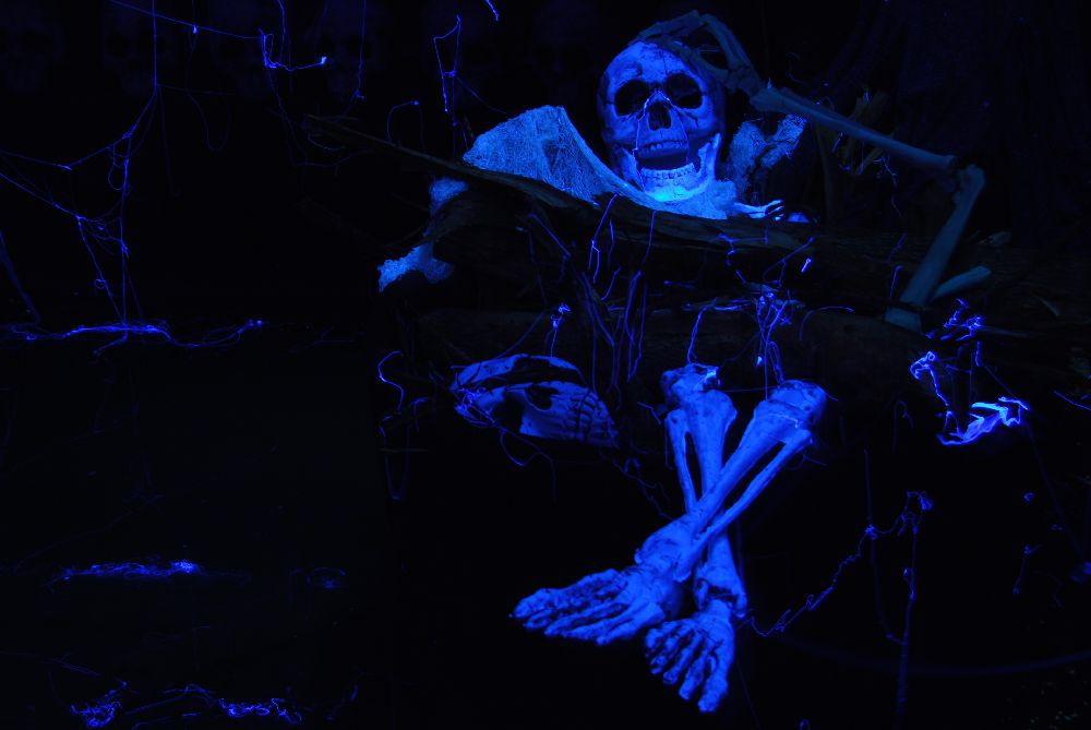The blue skeleton